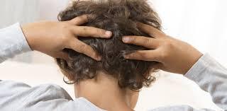 health check how do you catch u2013 and get rid of u2013 head lice
