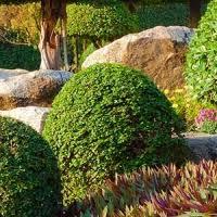 garten und landschaftsbau erfurt landschaftsbau erfurt galabau garten landschaftsgestaltung