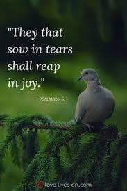 Comforting Bible Verses For Funerals 100 Best Funeral Quotes Funeral Quotes Psalm 91 And Bible