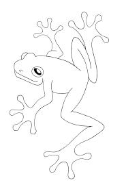 cool tree frog stencil