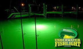 underwater fish lights green glow photo gallery underwater fishlight