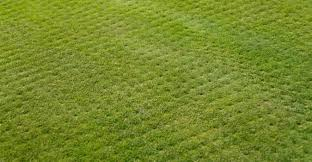 Landscaping Columbia Mo by Lawn Aeration Columbia Mo Chop Chop Landscaping Columbia Mo