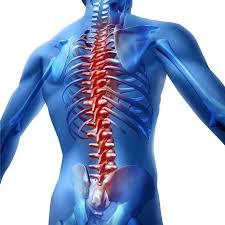 tilt table for back pain back pain back pain relief back pain treatments back pain exercises