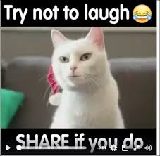 Keep Smiling Meme - 1027 best keep smiling images on pinterest brother fiery