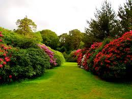 modern design beautiful garden pictures hd nature newest gardens
