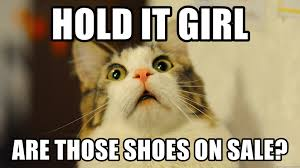 hold it girl are those shoes on sale surprised cat 22222 meme