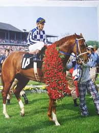 Kentucky how far can a horse travel in a day images Best 25 race horses ideas triple crown horse jpg