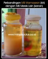 Minyak Bulus Asli Papua inilah cara menghilangkan jerawat dengan minyak bulus minyakbulus