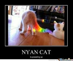 Nyan Cat Meme - nyan cat memes best collection of funny nyan cat pictures
