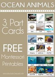 printable montessori curriculum solar system printable pack montessori ocean and science curriculum