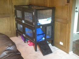 Diy Indoor Rabbit Hutch 153 Best Rabbits Images On Pinterest Rabbit Hutches Farm