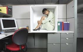 What Plants Are Cubicle Friendly by Here U0027s Something 9 Things You Didn U0027t Know About The Office