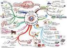 สารพันวิธีแก้ปัญหาสิ่งแวดล้อมด้วย Mind Mapping เก๋ๆ - Numthang.org ...