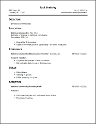 Experience On A Resume Resume Examples For Jobs With Little Experience Resume Example