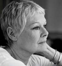 judi dench hairstyle front and back of head judi dench jameystegmaier com