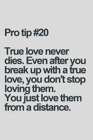 Loving My Best Friend Quotes by 77 Best Pro Tip Images On Pinterest Inspiring Quotes