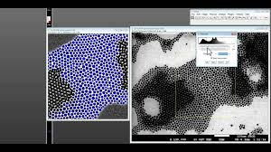 how to use imagej for nanoparticle size distribution analysis