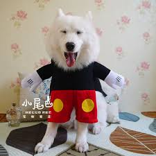 Big Dog Halloween Costume Cheap Halloween Costumes Big Dogs Aliexpress