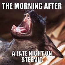 Morning After Meme - the morning after a late night on steemit steemit