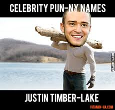 Names Of Memes - celebrity pun names