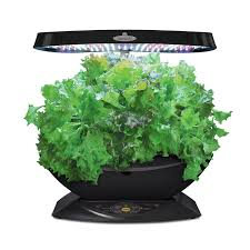 amazon com aerogarden 7 led indoor garden with gourmet herb seed