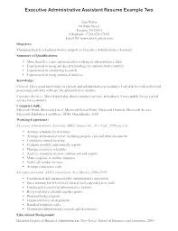 exle of resume summary exle summary for resume professional resume summary summary