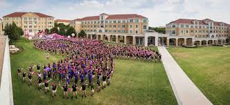 celebrate it 360 ribbon community page 17 tcu 360