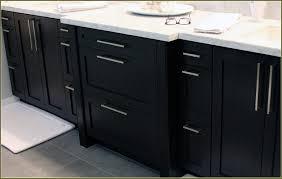 Stainless Steel Kitchen Cabinet Doors Stainless Steel Pulls Kitchen Cabinets With Bathroom Cabinet