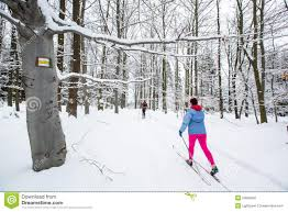 cross country skiing two women cross country skiing stock image