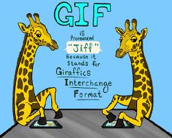 How Do U Pronounce Meme - gif vs jif funny