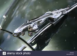 leaping chrome jaguar mascot ornament on the bonnet of a