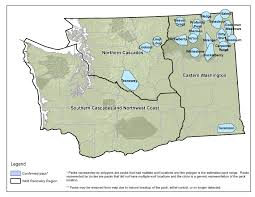 Washington State Ferries Map by Wolves Kill More Cattle In Northeastern Washington The Spokesman