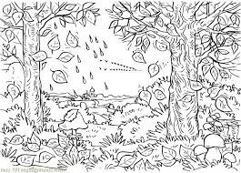 coloring pages autumn tree natural world free printable 453364