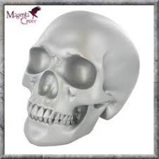 white skull ornament large 26 99 28cm and well detailed it s