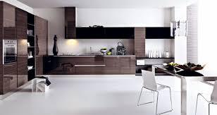 Black And White Contemporary Kitchen - kitchen contemporary kitchen units white kitchen simple kitchen