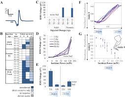 transdermal optogenetic peripheral nerve stimulation iopscience