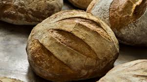 refrigerator stored artisan boule with whole grains the splendid