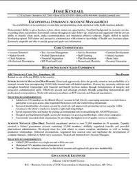 sample of insurance agent resume template http www