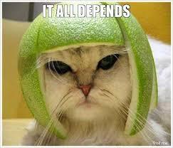 Troll Meme Generator - it all depends war cat troll meme generator warrior cats