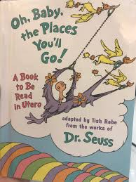oh baby the places you ll go book review 40 time