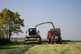 l apprentissage agricole dans les hauts de version longue bp responsable d exploitation agricole ou viticole cfa agricole
