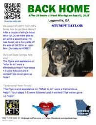 risk n hope australian shepherds graphic made by angry dog owner to put on craig u0027s list pets and
