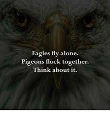 Together Alone Meme - eagles fly alone pigeons flock together think about it being
