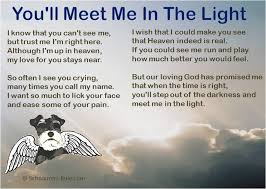 grieving loss of pet grieving pet loss quotes 015 best quotes facts and memes