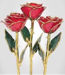 color roses 3 color roses gold roses 24kt gold trimmed roses