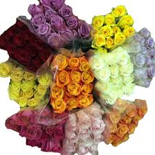 bulk roses buy wholesale wedding roses in bulk online danisa s flowers