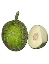 cuisiner le fruit de l arbre à à prix recettes et conservation grand frais
