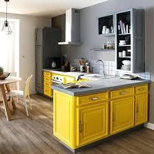 peindre placard cuisine peinture meubles de cuisine couleur peinture meuble cuisine
