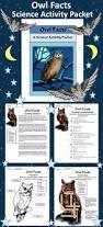 best 25 owls kindergarten ideas on pinterest owl themes