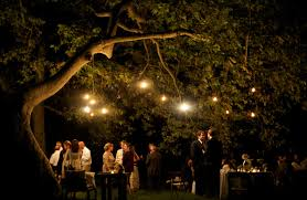 twinkling wedding lights once wed